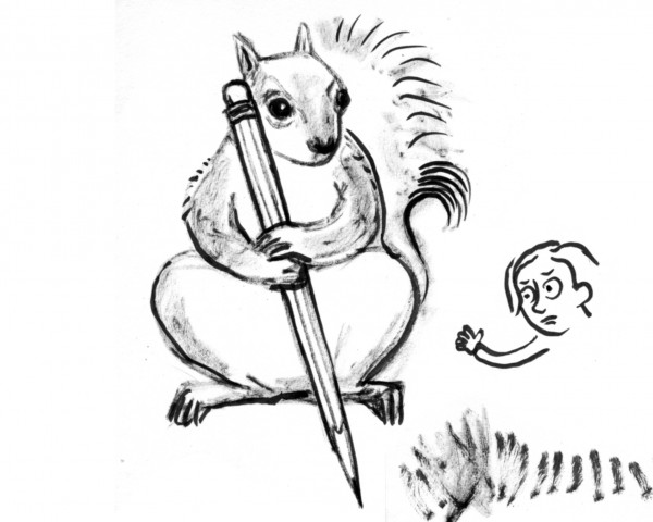 biggersquirrel-kr